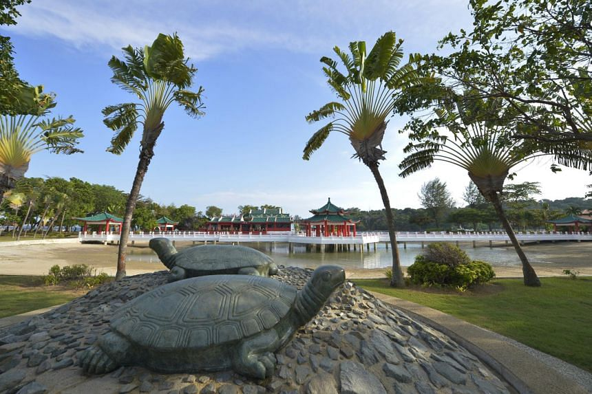 The marble tortoise statues on the outskirts of Kusu Island's Da Bo Gong Temple. Devotees are encouraged to visit Kusu Island during weekdays and off-peak hours.