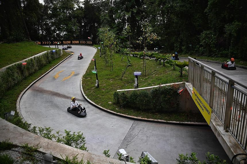 Skyline Luge Sentosa yesterday introduced two new downhill routes, which promise more twists and turns, including hairpin corners, for visitors. The island attraction also has an additional Skyride chairlift, which will cut the waiting times for ride