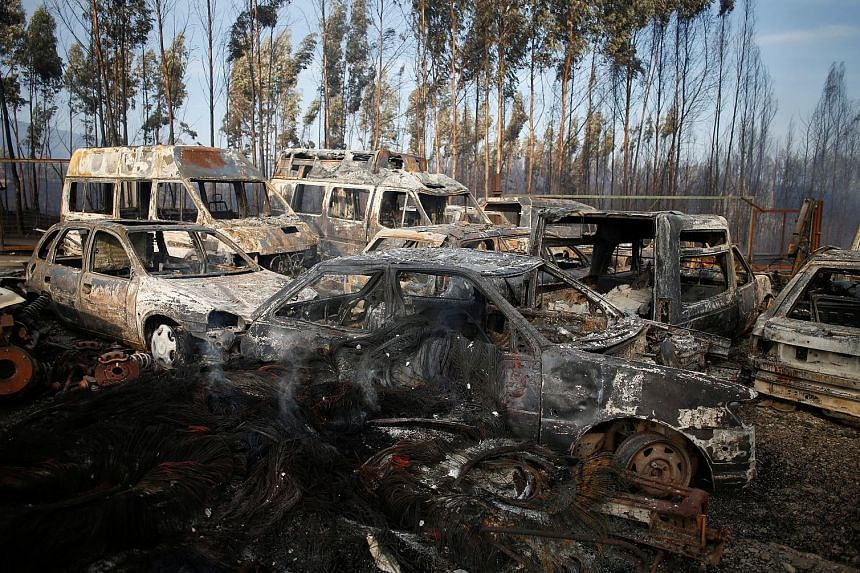 The aftermath of a forest fire in Miro, near Penacova in Portugal, yesterday. The country's civil protection agency says the 15 biggest fires have been brought under control.