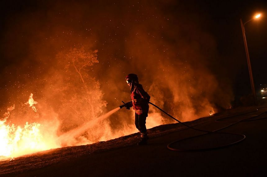 A Portuguese firefighter trying to extinguish a wildfire in Cabanoes near Louzan on Oct 16, 2017.
