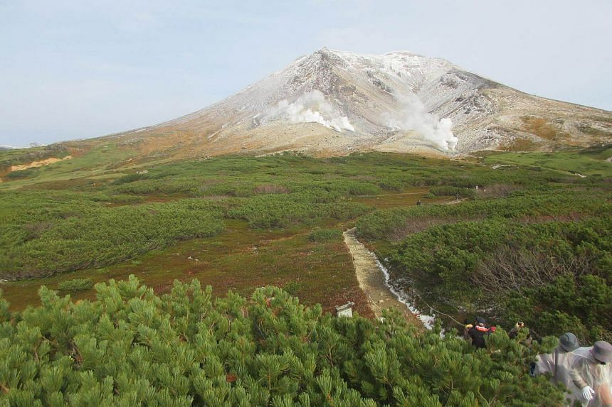 A group of four hikers - two Japanese, a Malaysian and a Singaporean - had been hiking up Asahidake, Hokkaido's tallest mountain, when bad weather caused them to take a wrong turn.