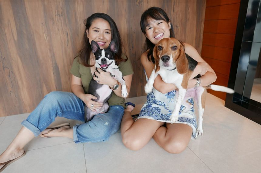Rachel Pereira (left) and Sandee Goh (right) with their dogs Lucy and Clash. PHOTO: RACHEL PEREIRA AND SANDEE GOH