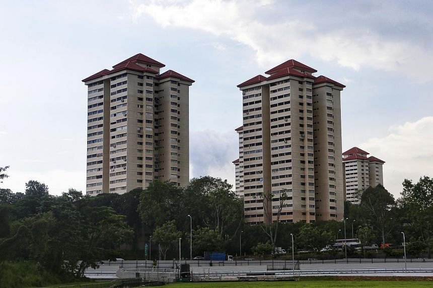 Normanton Park, a 488-unit development near Science Park, is one of the estates that were sold off this year.
