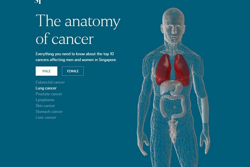 The Anatomy of Cancer beat five other contenders, including entries from The Wall Street Journal and Bloomberg, to win best website infographic at the Editor & Publisher EPPY 2017 Awards.