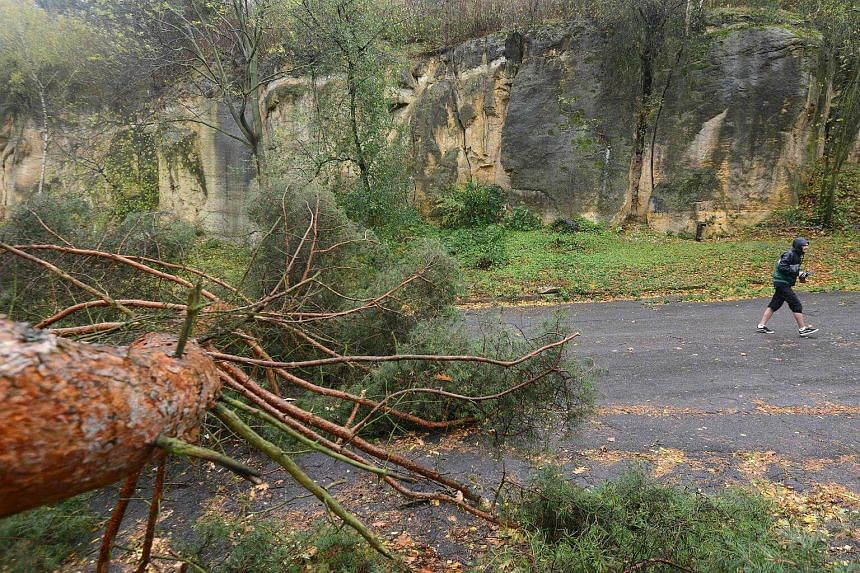A fallen tree in Prague, after winds reached more than 100 kph in several parts of the Czech Republic during a storm.