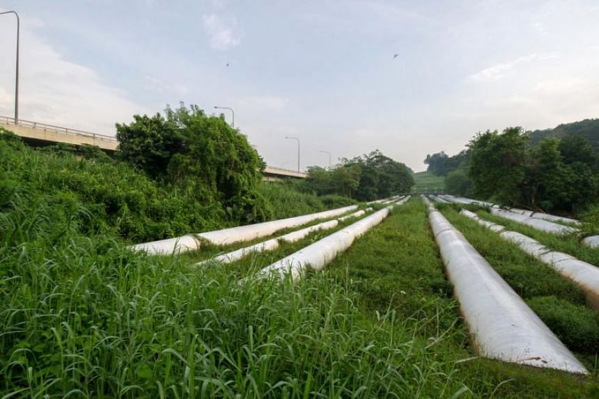 """PUB said it had """"progressively resumed water supply to both Singapore and Johor"""" after water quality was deemed suitable for treatment."""