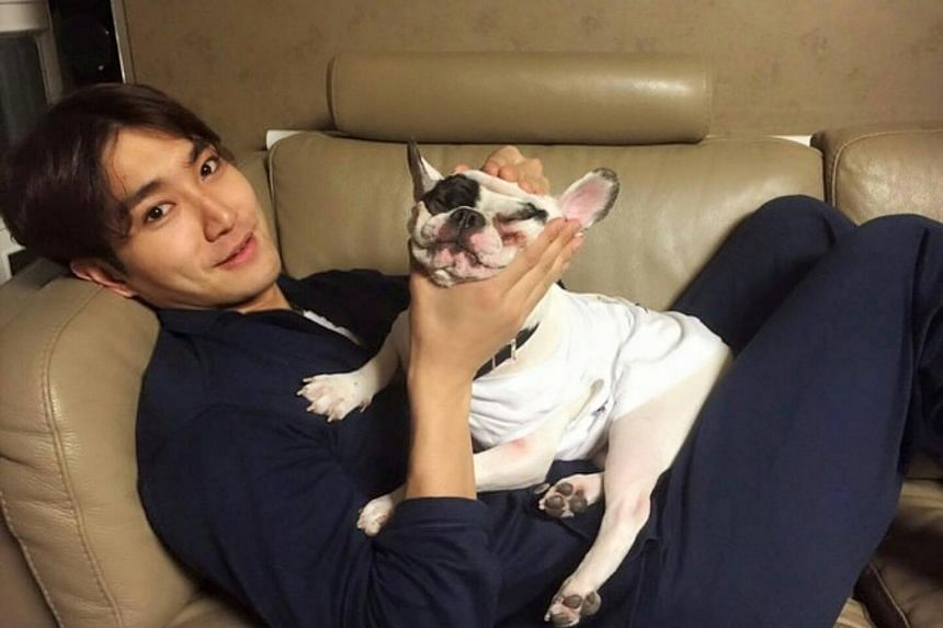 Choi Si Won and his family are under fire for a recent accident in which a restaurateur died of sepsis on Oct 6 after being attacked by their pet dog.