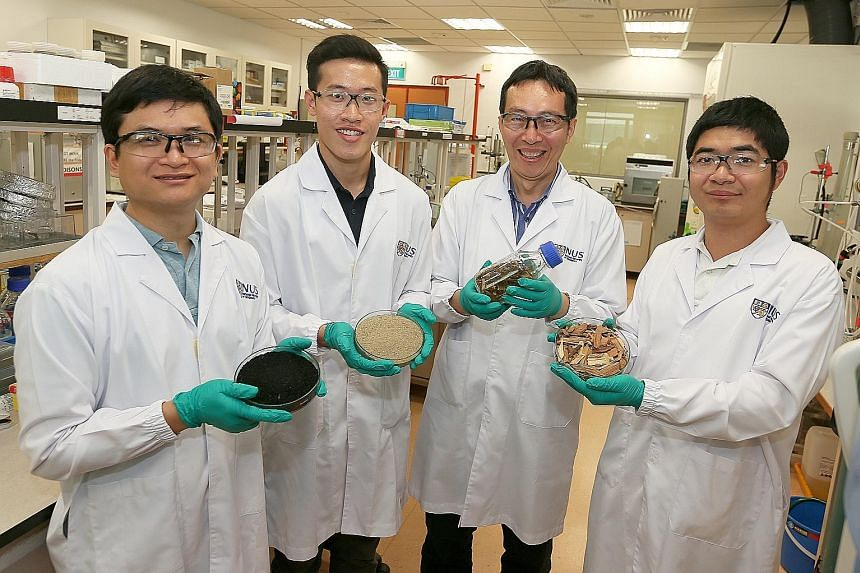 From left: Dr You Siming, 31, (holding biochar) Mr Ng Wei Cheng, 27, (holding soil sample) Professor Wang Chi-Hwa, 52, (holding horse manure with wood bedding) and Mr Shen Ye, 25 (holding wood chips) from the National University of Singapore's depart