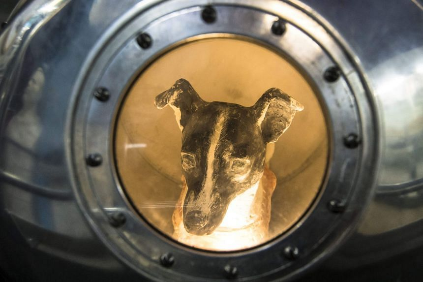 An effigy of the dog Laika, the first living creature in space, inside a replica of satellite Sputnik II at the Central House of Aviation and Cosmonautics in Moscow on Nov 1, 2017.