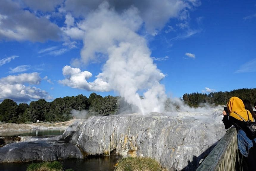 The famous Pohutu Geyser.