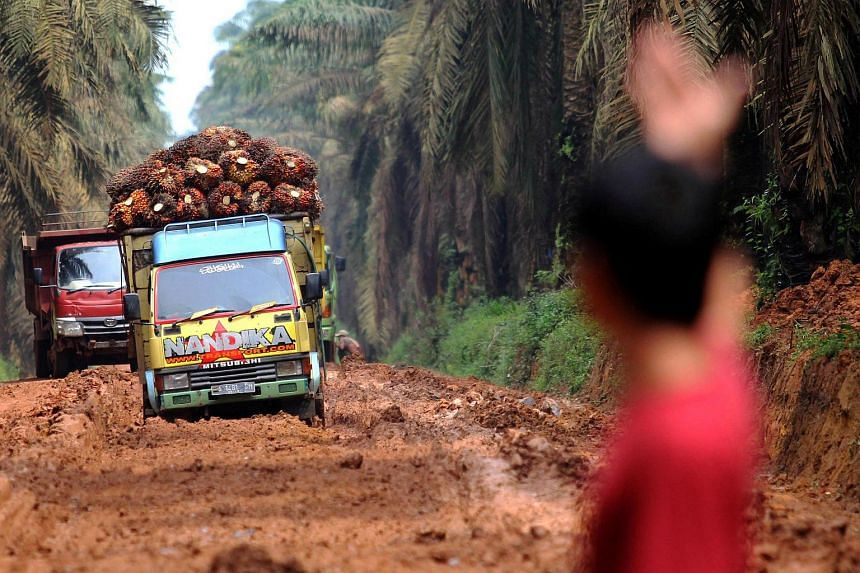 A man assists trucks that carry palm oil fruit on a damaged road at Mesuji Raya village, Indonesia.