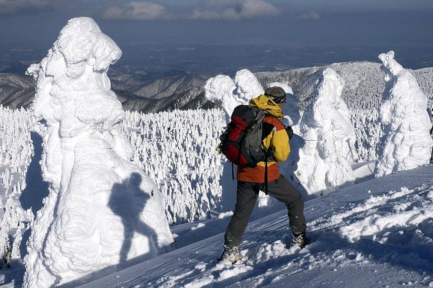 Stop by Giant's Causeway on Chan Brothers Travel's Exquisite England, Scotland and Ireland tour. Go on a winter snowshoe tour in Tohoku with Walk Japan.