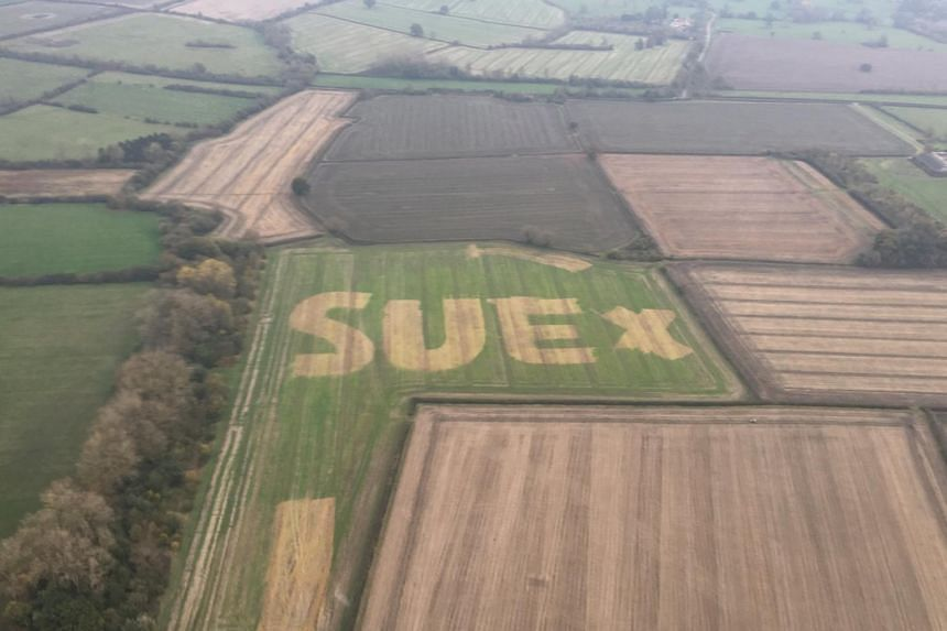 The aerial photo went viral with the hashtag #FindSue and the Internet was roped in to help uncover the identity of the mysterious Sue.
