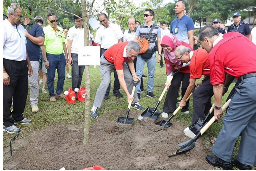 Prime Minister Lee Hsien Loong at an annual tree planting event with 300 Ang Mo Kio GRC and Sengkang West SMC residents at  Luxus Hills Park on Nov 5, 2017.