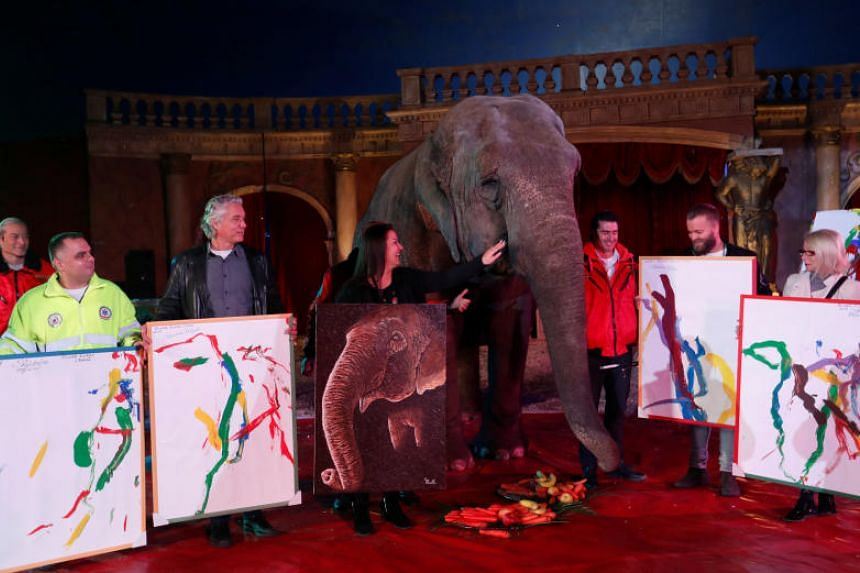 Sandra, a 42-year-old elephant, poses for a photo with Hungarian circus fans who bought her painting in the Florian Richter Circus in Budapest, Hungary on Nov 4, 2017.