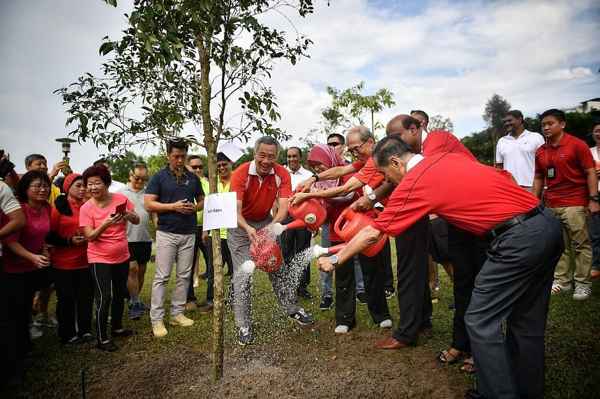 Prime Minister Lee Hsien Loong and advisers to Ang Mo Kio GRC and Sengkang West planted a Cratoxylum maingayi at Luxus Hills Park yesterday morning. The tree was one of nine planted by MPs and some 300 residents at the annual tree-planting event in A