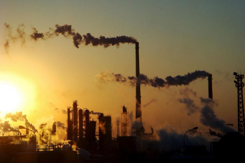 A file photo of a chemical plant in north China's Tianjin municipality, on Dec 23, 2008.