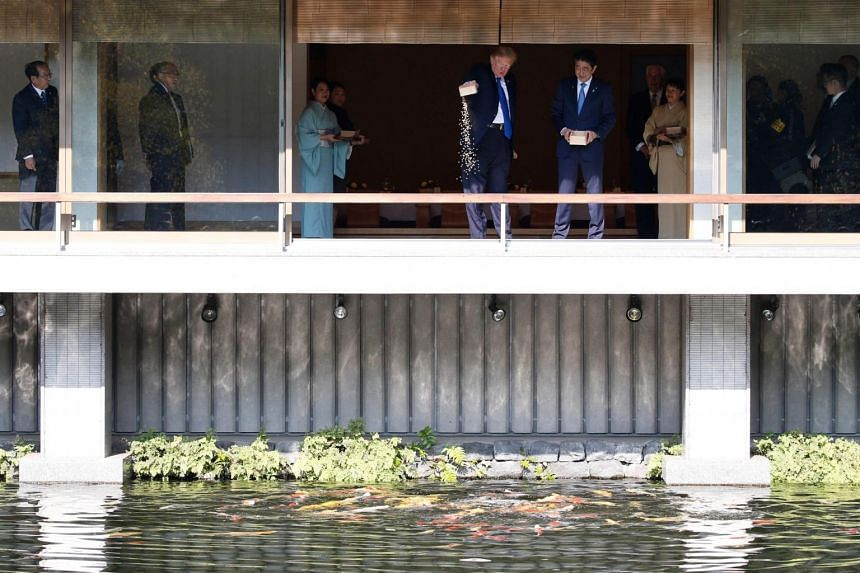 US President Donald Trump (centre, left) and Japanese Prime Minister Shinzo Abe (centre, right) feed koi fish during a welcoming ceremony in Tokyo.