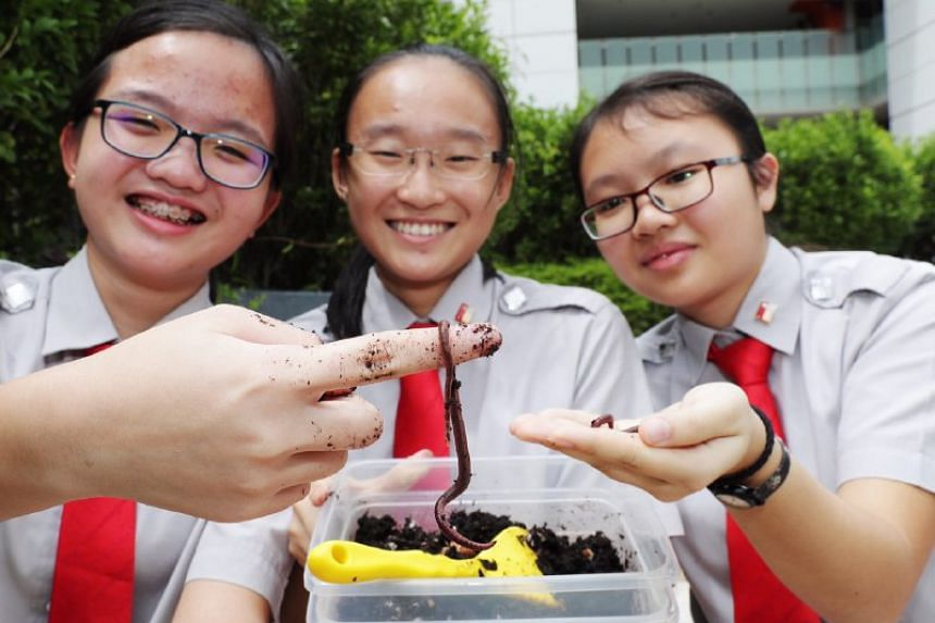 (Left to right) Jacqueline Tan, 15 , Xie Wanxin, 15 and Vanessa Chan, 17 from National Junior College showing their worms.