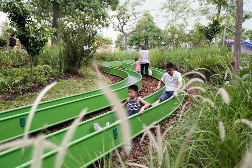 Mr Chuah Hock Seong, NParks' group director of parks , said slides meant for children should be used correctly.
