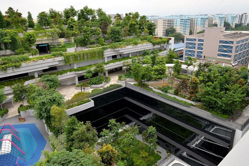 The 11-storey Kampung Admiralty complex has has a combined rooftop community park, edible garden and rainwater catchment area on levels six to nine.