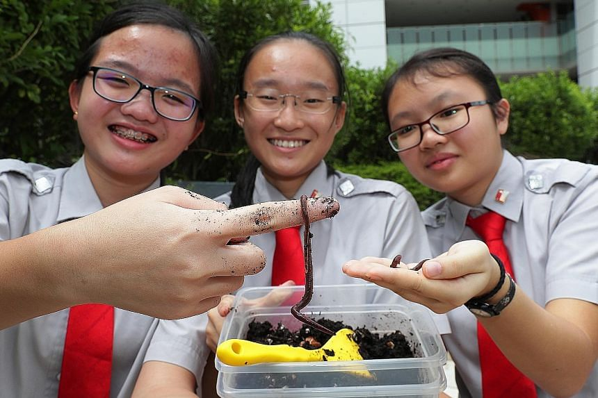 "National Junior College students (from left) Jacqueline Tan, 15 , Xie Wanxin, 15, and Vanessa Chan, 17, showing some of the worms used to turn food waste into liquid fertiliser, or ""worm tea"". The school's students also shared their knowledge of verm"