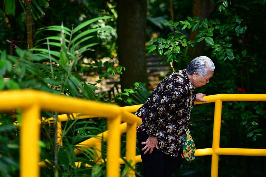 A devotee climbing 152 steps to reach the Kusu Kramats at the top of the hill of Kusu Island on Oct 27, 2017.