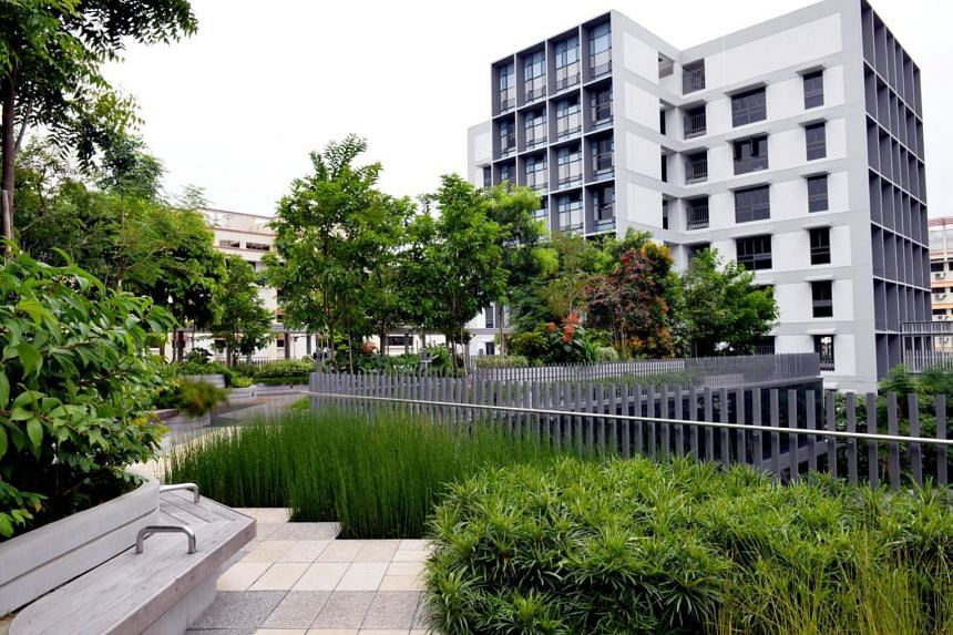 The enhancements aim to encourage landscaping on walls and roofs that not only beautifies buildings, but also provides visual relief to passers-by and cools the ambient temperature.