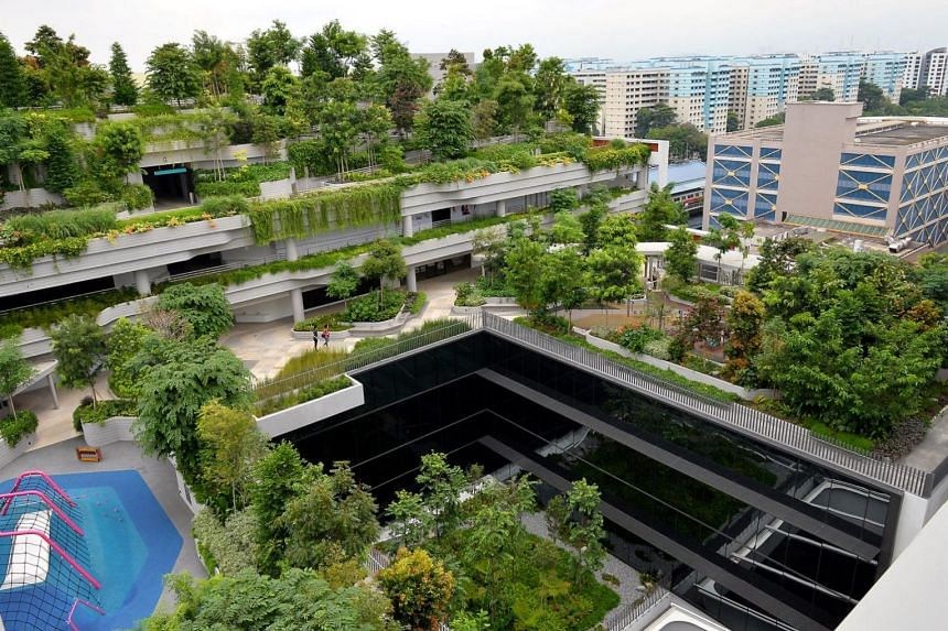 The 11-storey Kampung Admiralty complex has a combined rooftop community park, edible garden and rainwater catchment area on levels six to nine.