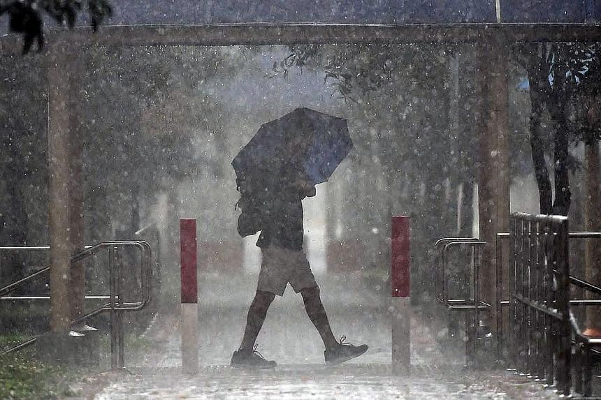 A man braving a downpour in Tampines Street 82 yesterday afternoon. Thundery showers struck most parts of Singapore yesterday, with Khatib logging the heaviest rainfall for the day as of 8pm, according to the Meteorological Service Singapore. The isl