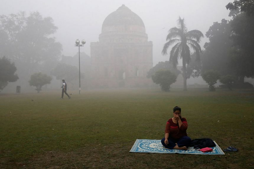 A park shrouded in smog in New Delhi yesterday. The smog, which arises every year, has been compounded this year by still-weather conditions.
