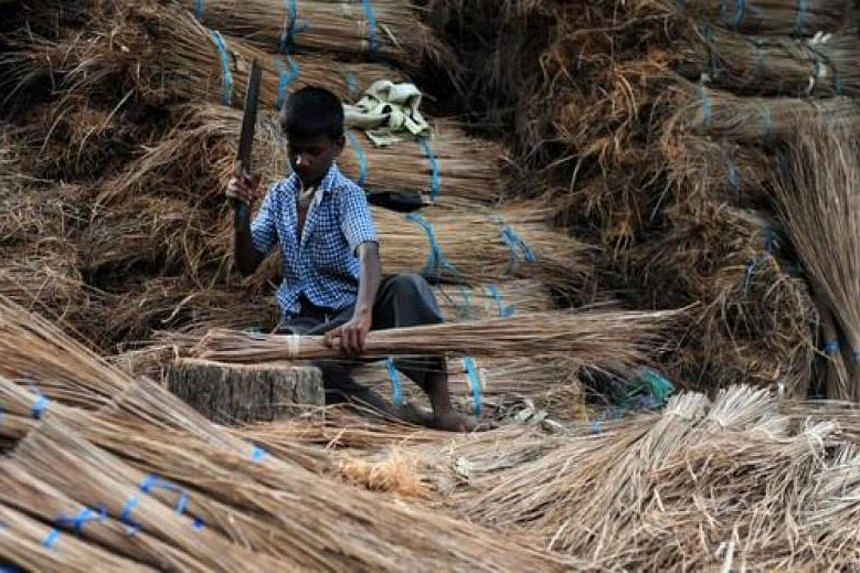 An Indian child chops coconut leaves and sticks as he makes broomsticks at a production unit in Chennai.