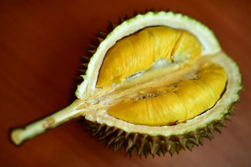 Studies have shown that the durian has anti-ageing properties and contributed to the body's production of serotonin.