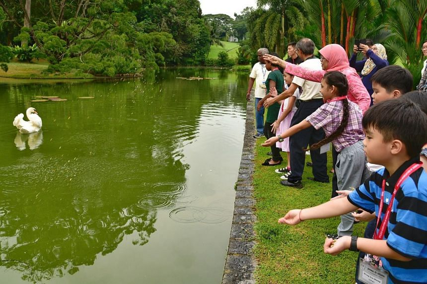 Some 40 children from the Dyslexia Association of Singapore visited the Istana on Friday (Nov 17), kickstarting the new Picnic@Istana series.