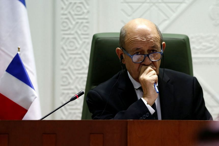 France's Foreign Minister Jean-Yves Le Drian (above) attends a joint news conference with Saudi Foreign Minister Adel al-Jubeir in Riyadh, Saudi Arabia.