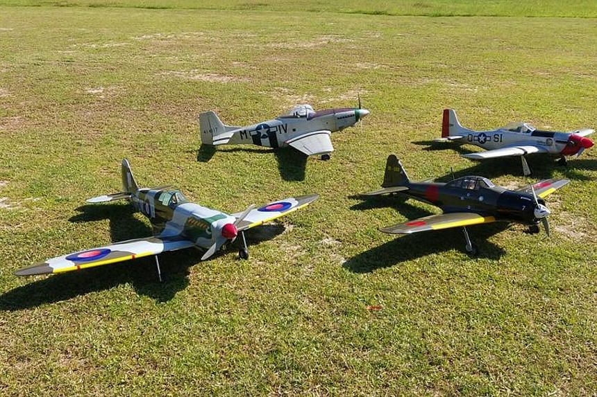 Club members of Radio Modellers Singapore can now fly their model aircraft, which range from small, entry-level models to faithful reproductions of airplanes that stretch more than 1m long, near Labrador Nature Reserve.