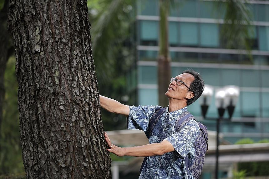 Dr Shawn Lum received the President's Award for the Environment for his significant involvement in biodiversity projects in Singapore. He had cared for the seeds of the endangered Hopea sangal like they were his children and helped them grow into str
