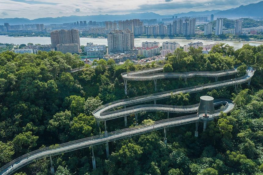 It is a walk in the park - but not for the faint-hearted - at an elevated forest trail in China's south-eastern province of Fujian. The idea behind the 19km trail - built by Fuzhou city's Zuohai Park - is inspired by Singapore's Alexandra Garden Trai