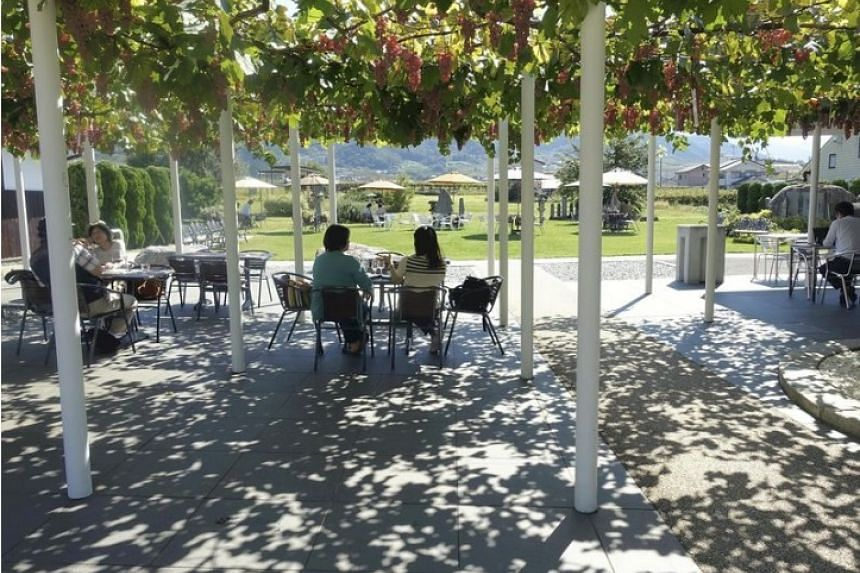 The beautiful scenery at Chateau Mercian complements the wines.