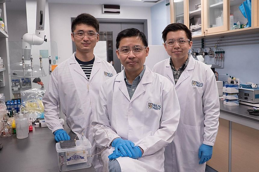 (From left) PhD student Ren Dan, Assistant Professor Jason Yeo and research assistant Nicholas Loo make up the NUS team that have developed an artificial photosynthesis system to produce ethylene using copper, carbon dioxide and water.