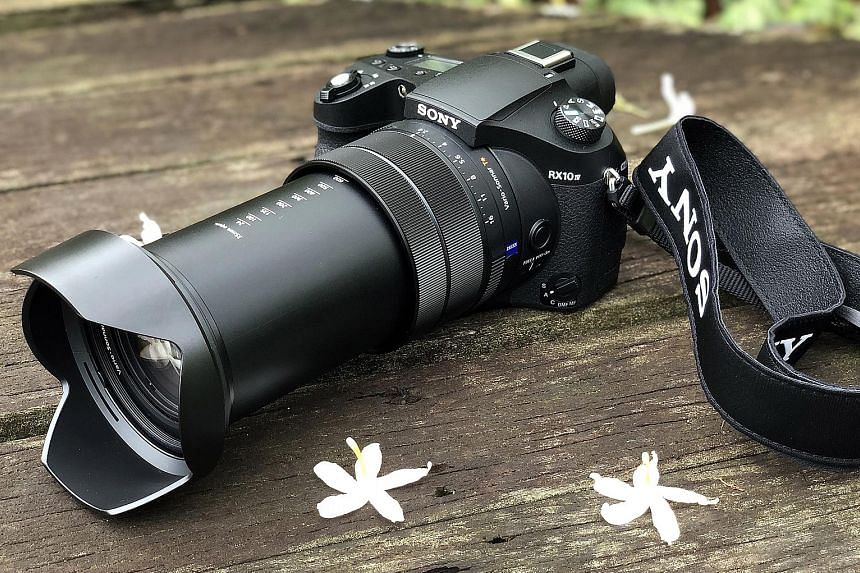 Sony's RX10 IV ideal for shooting wildlife, Cameras News & Top