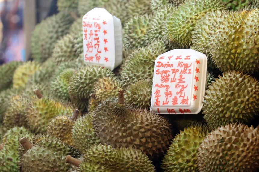 The Royal ASFA50 is said to taste as good as the Musang King (above) but needs only less than half the time to mature.