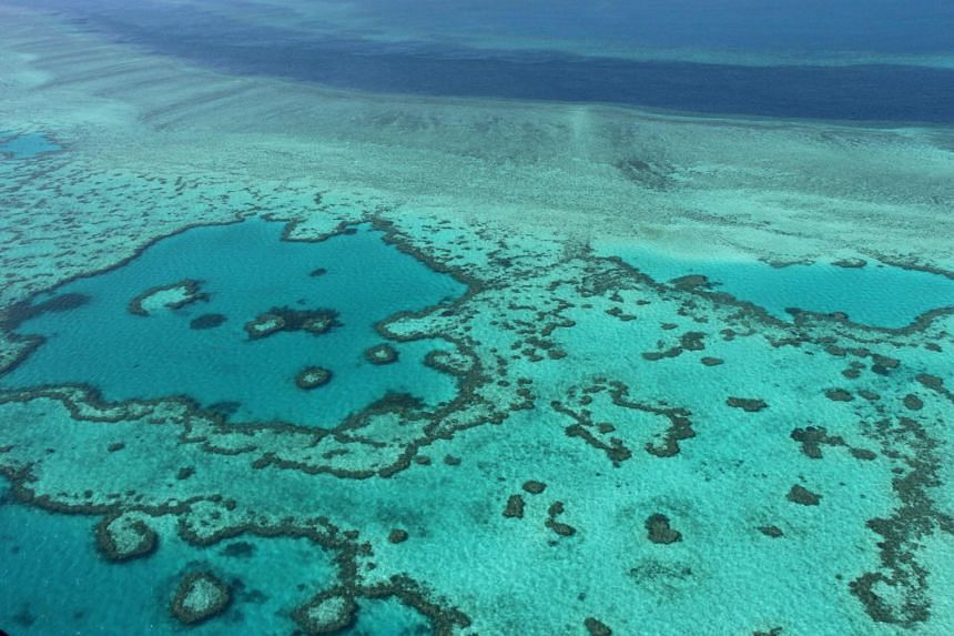 An aerial view of the Great Barrier Reef off the coast of the Whitsunday Islands, along the central coast of Queensland.