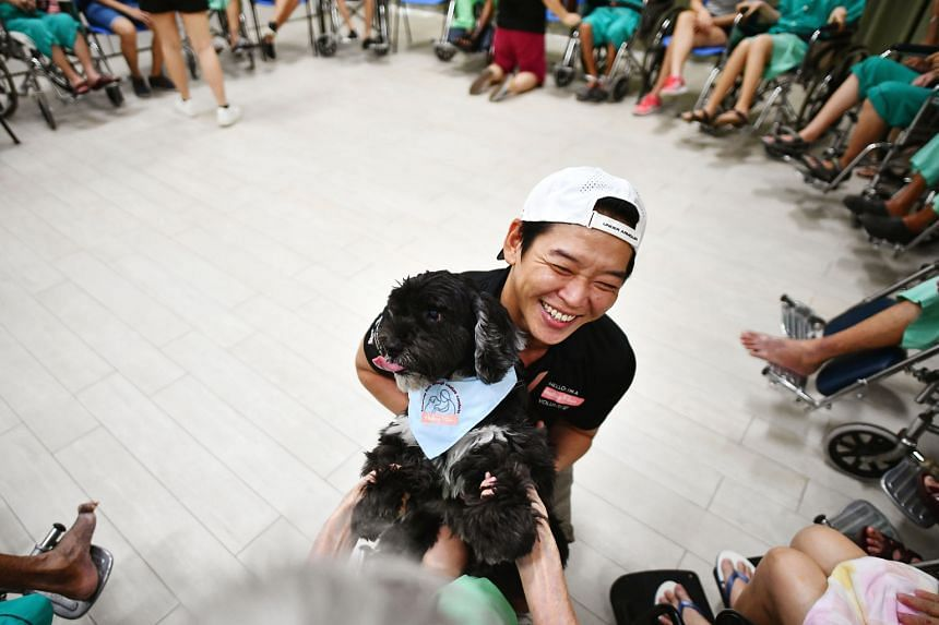 Volunteer Christopher Kok, 43, and his 11-year-old male cocker spaniel, Smoky, interacting with the elderly at Ren Ci Nursing Home on Oct 22. There were about 15 volunteers, two dogs and 20 beneficiaries for the Healing Paws programme at Ren Ci on the day