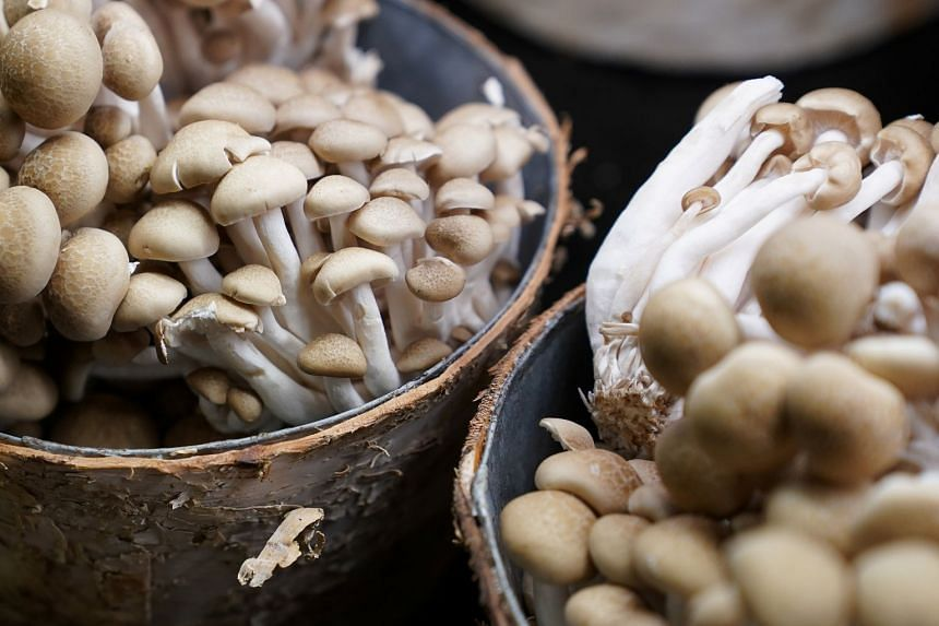 Mushrooms on sale in New York City, in the US.