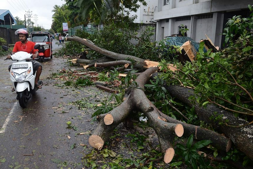 Powerful winds toppled trees and damaged buildings in Colombo on Nov 30, 2017.