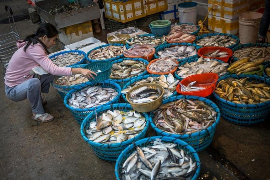 A woman chooses fish at a street market in Xiamen, China on Nov 27, 2017.