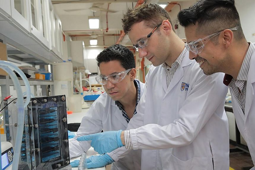 Researchers from the NUS Faculty of Engineering have come up with a wastewater purification system that can remove up to 99 per cent of impurities found in industrial wastewater.