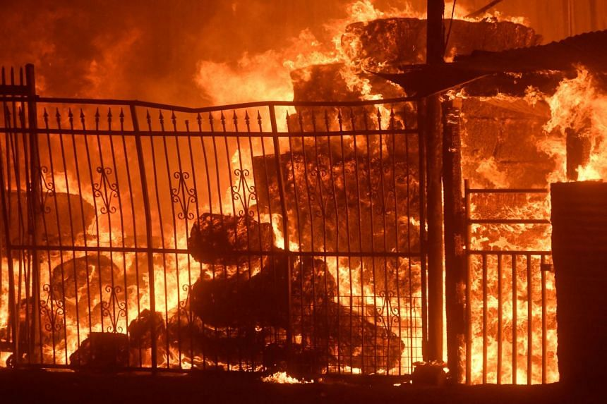 Wildfire engulfs horse stables after an early-morning Creek Fire that broke out in the Kagel Canyon area in the San Fernando Valley north of Los Angeles on Dec 5, 2017.