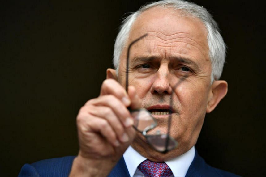 Australian Prime Minister Malcolm Turnbull has insisted that the new anti-interference laws were not aimed at a single country.